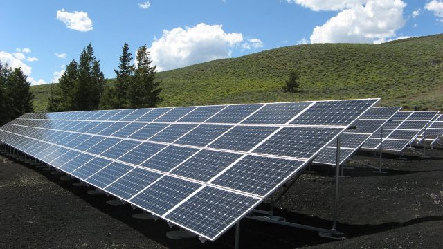 Solcelleanlæg på grøn mark